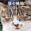 うちの猫ずっと寝てる…これって普通?寝すぎ?大丈夫なの?