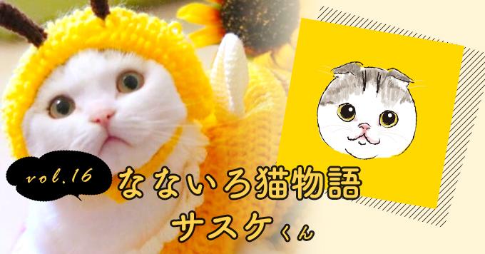 なないろ猫物語Vol.16|「サスケ」ーたくさん愛して猫生を全うさせてあげたい