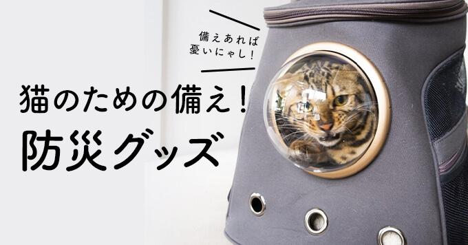 猫のための非常袋を備えよう~猫飼いさんが揃えたい防災グッズ~