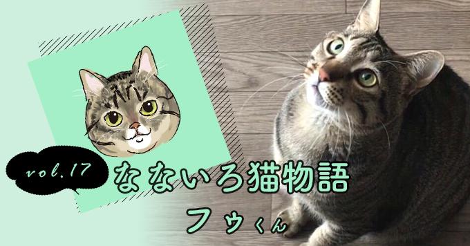 なないろ猫物語Vol.17|「風(フゥ)」ー私を選んできてくれてありがとう