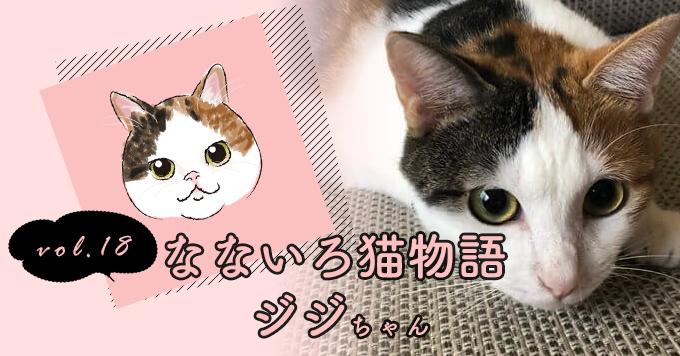 なないろ猫物語Vol.18|「ジジ」ー7年連れ添った猫を亡くし、、、そして出会った