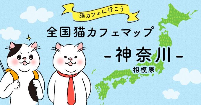 猫カフェマップ - 神奈川編:相模原エリア