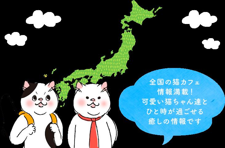 全国のいろんな猫カフェの情報を掲載!可愛い猫ちゃん達とひと時が過ごせる癒しの情報です