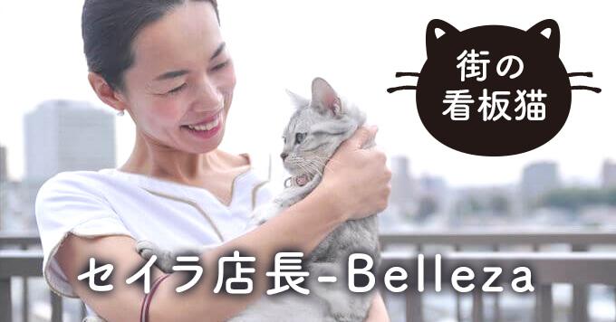 【看板猫】ときに助けてくれ、ときに学ばせてくれる存在「セイラ店長」~Belleza