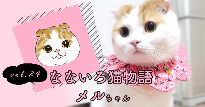 なないろ猫物語Vol.24|「メル」~猫初心者の私の人生を鮮やかに彩ってくれた