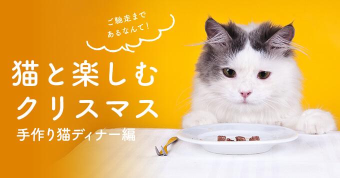 2019クリスマス~みなさんの手作り猫ディナーをちょっと覗き見~