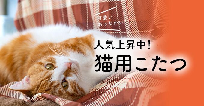 【2020冬】猫用こたつが人気上昇中!~寒がり猫さまもほっくほく~