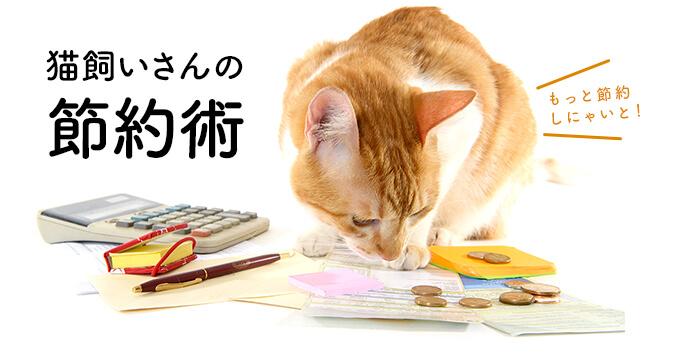 猫飼いさんの楽しい節約術ご紹介~奥の手!キャッシュレス /ポイント還元も~