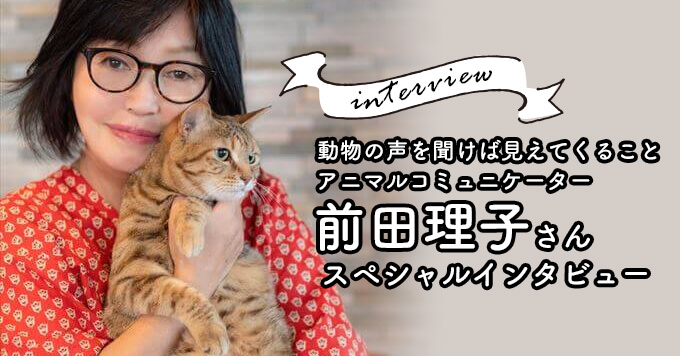 動物の心の声を聞けば今よりもっと幸せに〜アニマルコミュニケーター前田理子さんインタビュー