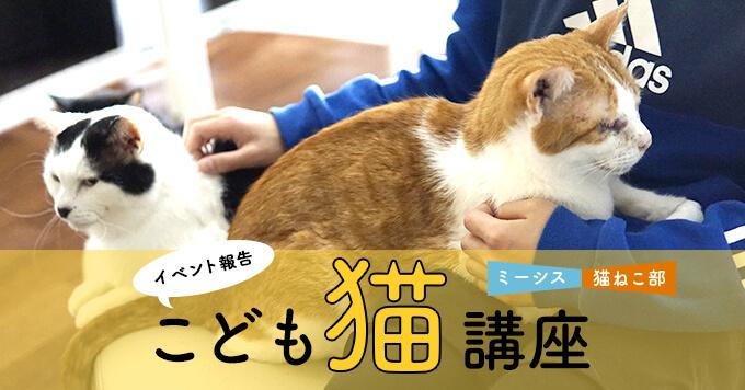 【イベントレポ】ミーシス×猫ねこ部「こども猫講座」を開催しました!