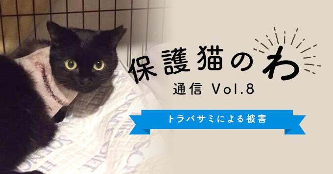 保護猫のわ通信Vol.8|後を絶たないトラバサミによる被害