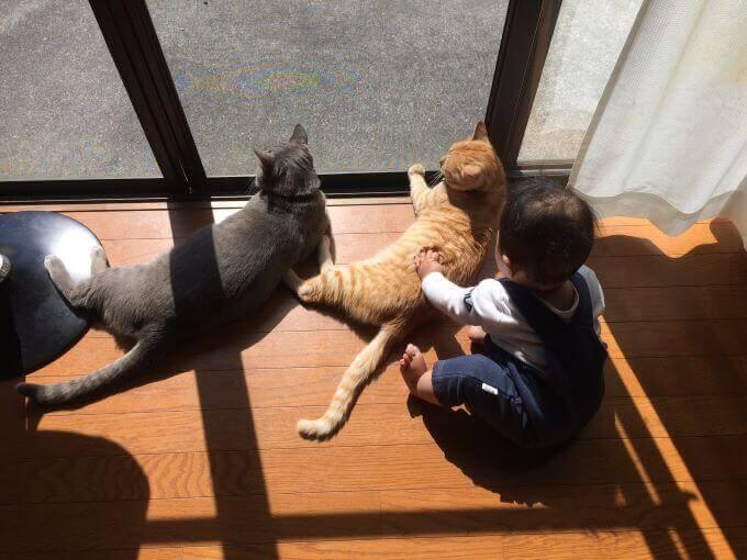 からいちさんと赤ちゃん3