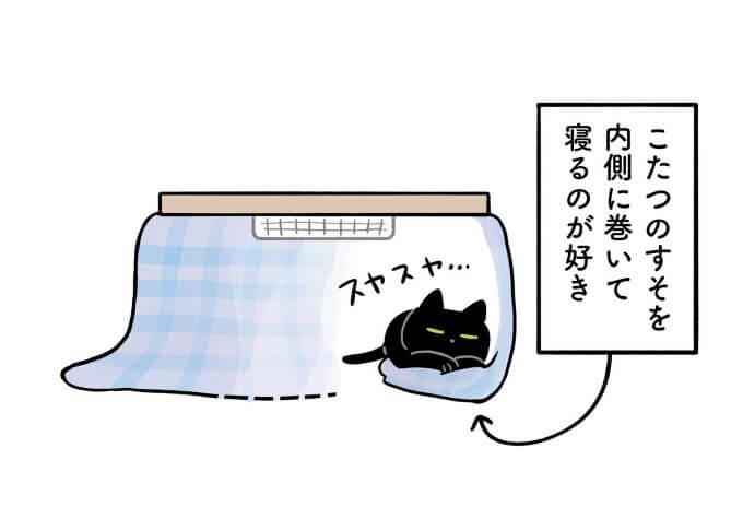 黒猫ろんさま
