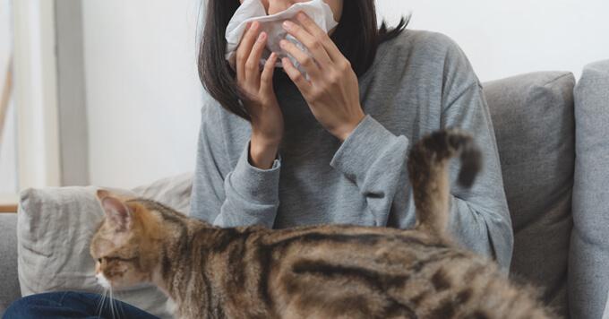 【新型コロナウイルス】飼い主さんが感染しない注意が最も重要|東京都獣医師会(2020.3.5)