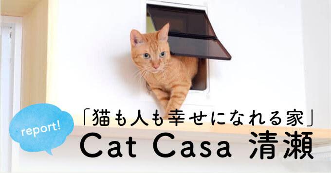 猫好きが作った「猫も人も幸せになれる家」Cat Casa(キャットカーサ )清瀬