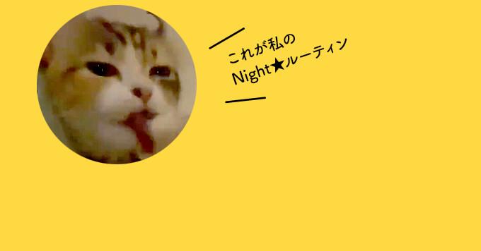 子猫さんの【ナイトルーティーン】まったり寝る準備中ですよ~