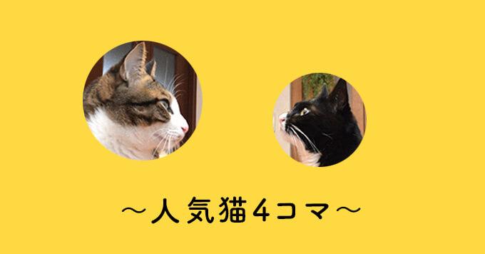 【人気猫4コマ】ドヤりつつも…可愛くお風呂拒否する猫さんが面白い!