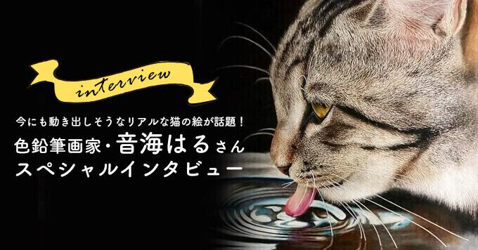 「え?写真じゃないの?」今にも動き出しそうなリアルな猫の絵が話題!色鉛筆画家・音海はる