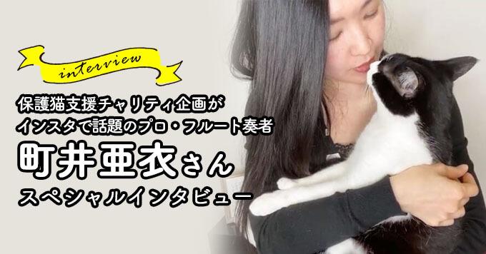 Instagramで話題!保護猫支援チャリティ企画~プロ・フルート奏者「町井亜衣」さん