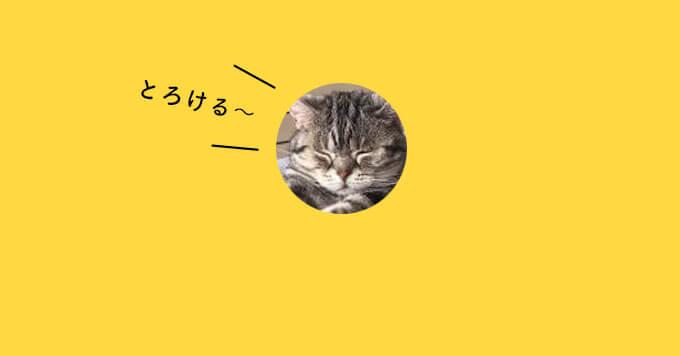 猫さんもダメになっちゃた~話題のとろけ猫さんはこちらです