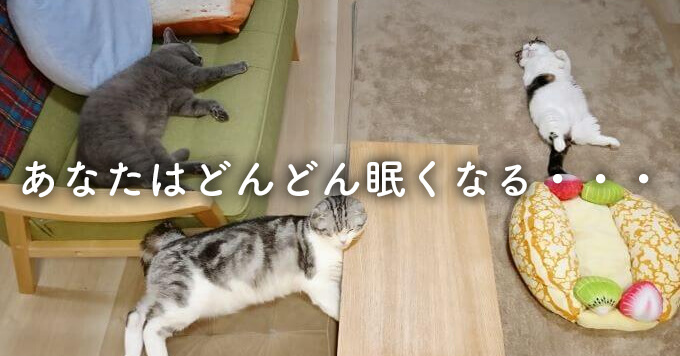 見てると眠くなる!?そんなおねむ猫3ニャンズのツイッターが癒しの宝庫