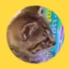 子猫あるある?テレビを勉強中に…もう一つ大切なことを学ぶ小さな猫さん