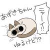 【人気の猫漫画】飼い主を寝かしつけるシャム猫さん!?ツンデレ優しい~