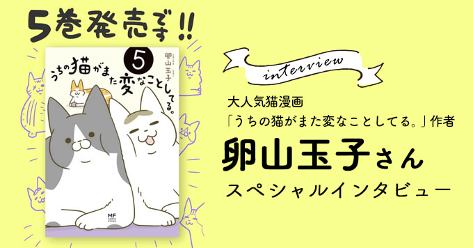 【おうち時間のお供に】大人気猫漫画「うちの猫がまた変なことしてる。」発売!~卵山玉子さん