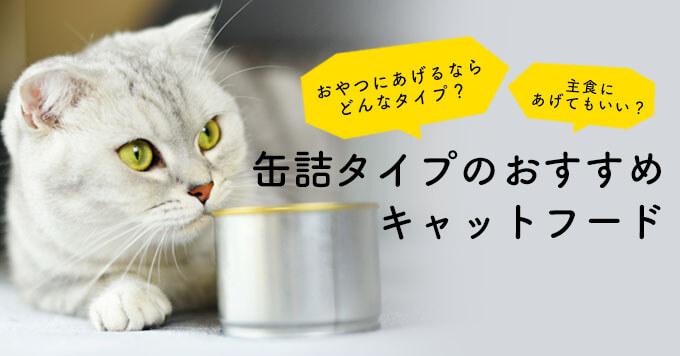 缶詰タイプキャットフードの選び方とおすすめ8選