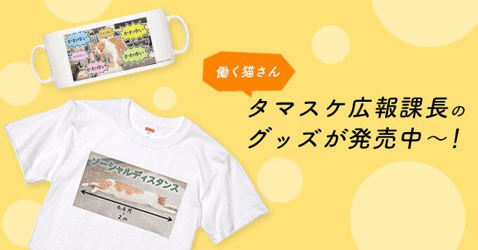 【働く猫さん】タマスケ広報課長のグッズが発売中~!