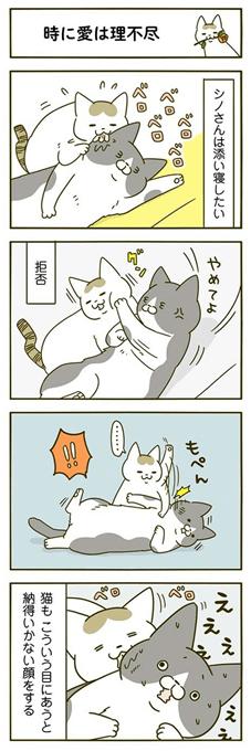 てる また うち 変 こと の が し 猫 な