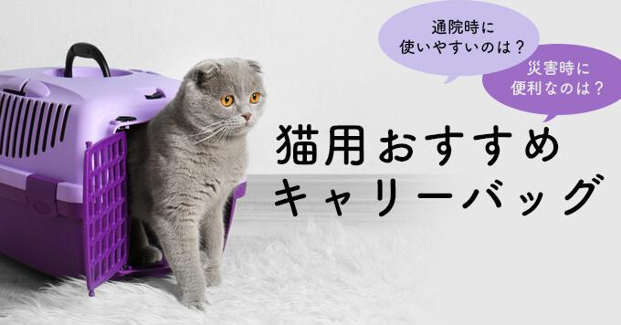 猫用キャリーバッグおすすめ25選【選び方や飼い主さんの生の声もご紹介】