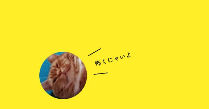 【うらめしニャー】おばけスタイルで寝る猫さんが怖さゼロ!可愛さは満点~