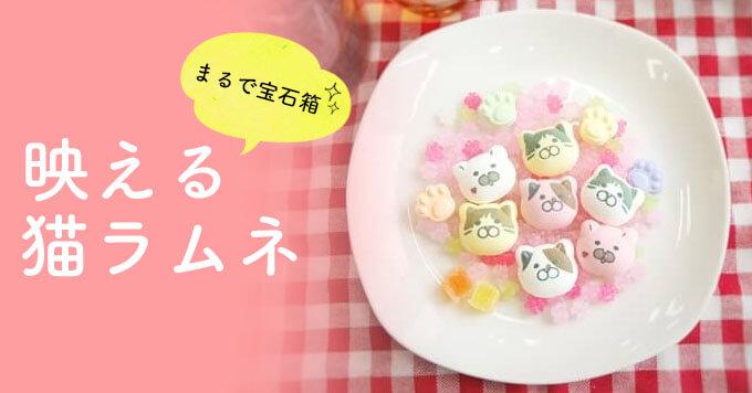 猫の和菓子「まるで宝石箱~」映える猫ラムネが話題です