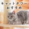 【猫住宅のプロが教える】キャットタワーの選び方とおすすめ18選
