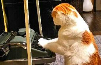 おしゃれなおウチの猫さん!ムーディーなレトロ空間が似合いすぎ…