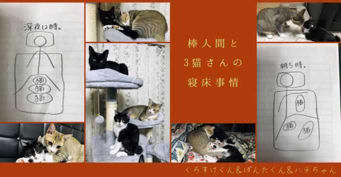 【3猫さんの寝床事情】棒人間が隅っこに追いやられるイラストに共感の声続々~
