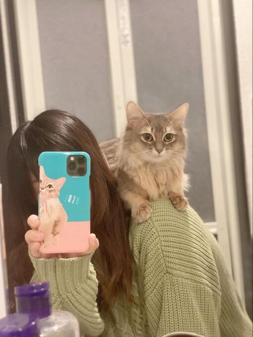 猫のれおるちゃん