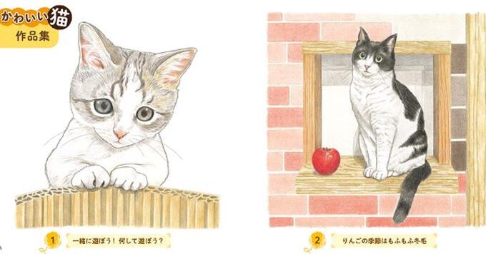 【猫塗り絵】素敵なおとな趣味のご提案「かわいい猫 癒しのもふもふ大集合」発売中です