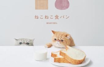 猫型【ねこねこ食パン】が7月限定「トロピカルチョコバナナ」を新発表~!